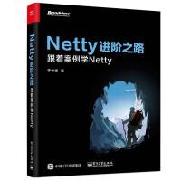 正版 Netty进阶之路:跟着案例学Netty Netty的启动和停止 内存 并发多线程 性能 可靠