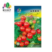 盆栽番茄种子小袋松大园艺家庭阳台盆栽精选花卉蔬菜种子易养易活