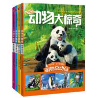 正版全新 动物大惊奇全4册(少儿全景写实手绘动物百科大图典,实景式阅读感受,给孩子知与美的体验!)