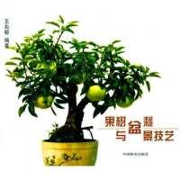 果树盆栽与盆景技艺 【正版图书,达额立减】