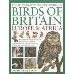 【预订】The Illustrated Encyclopedia of Birds of Britain