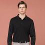 伯克龙 男士长袖POLO衫纯色棉质t恤 男装青中年修身休闲商务翻领保罗衫 A8893
