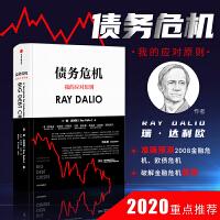 债务危机我的应对原则雷达里奥中文版 principles桥水瑞达利欧RayDalio工作生活的基本金融危机投资周期企业