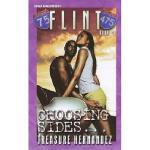 【预订】Flint Book 1: Choosing Sides