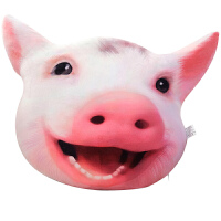 抱枕仿真猪头3d毛绒公仔可爱小猪玩偶搞怪玩具个性恶搞表情包
