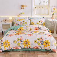伊迪梦家纺 全棉四件套床上用品实拍纯棉家纺床品套件1.2/1.5/1.8/2.0米床宽单双人床HC808