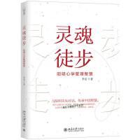 灵魂徒步 阳明心学管理智慧 李安【正版图书,品质无忧】