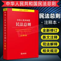 2019中华人民共和国民法总则注释本