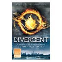 英文原版 Divergent1 分歧者系列 部:异类觉醒 文学版