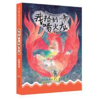【二手旧书9成新】我捡到一条喷火龙-彭懿 安徽少年儿童出版社-9787539793498