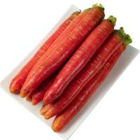 【包邮】陕西红萝卜透心胡萝卜10斤装(含箱) 农家自种蔬菜