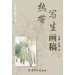 热带写生画稿(8K)刘龙耀/安维奎9787554702246暂无