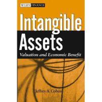 【预订】Intangible Assets: Valuation And Economic Benefit
