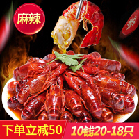 星农联合红小厨麻辣小龙虾 1800g净虾1000g 10钱/只 20-18只