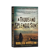 英文原版 A Thousand Splendid Suns 灿烂千阳经典外国社会小说