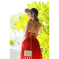 维绯新款开叉红色露背绑带雪纺连衣裙海边度假沙滩裙波西米亚长裙 红色【裙子自带胸垫】