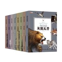 西顿动物故事 套装共8册(大角羊+松鸡+灰熊+浣熊+棉尾兔+猫+狼+野马)