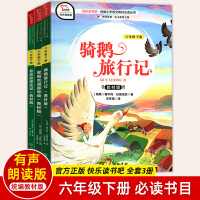 智慧熊快乐读书吧爱丽丝漫游奇境+骑鹅旅行记+鲁滨逊漂流记3本套 教材版统编 六年级下册必读青少年儿童文学