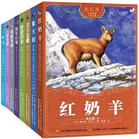 动物小说大王沈石溪中外动物小说全8册