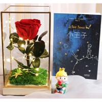 进口永生花礼盒小王子玫瑰真花带灯玻璃罩摆件520情人节礼物DIY礼品