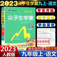2020春尖子生学案九年级下册语文人教版