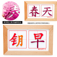 儿童智力积木玩具拼拼乐汉字磁性贴 木制质磁性拼字王拼图