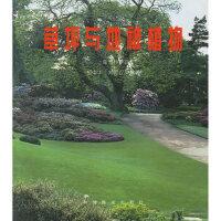 【新书店正版】草坪与地被植物上海市林学会中国林业出版社9787503813955