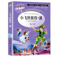 小飞侠彼得潘 推荐书目-人生必读书 名师点评 美绘插图版