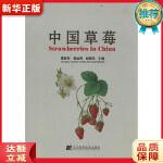 中国草莓 雷家军,张运涛,赵密珍 辽宁科学技术出版社9787538172485【新华书店 全新正版书籍】