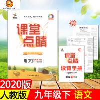 2020版 课堂点睛九年级下册语文 初中9年级下册 人教版 四川大学