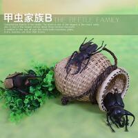 模型套装1-3-6周岁 仿真昆虫动物静态玩具儿童早教3d立体塑料