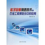粒子图像测速技术在石油工程螺旋流中的应用 王小兵 9787518305810 石油工业出版社