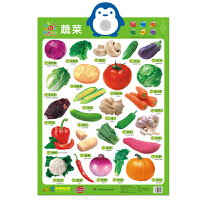 新版 阳光宝贝有声挂图 蔬菜 婴幼儿玩具宝宝早教益智游戏立体发声电子挂图入门认识汉字拼音人物交通工具教辅图书籍