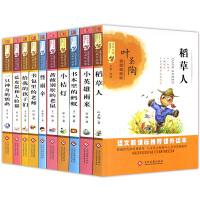 中国当代儿童文学名家名作精选第三辑共10册 稻草人小桔灯书本里的蚂蚁小学生课外阅读书籍三四五六年级课外书必9-10-12-15岁4-6读