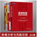 财报分析与风险识别套装共5册 从报表看舞弊+IPO财务透视+穿透财报发现企业的秘密等 财务会计书