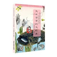 日本儿童文学大奖之旅:大头沼泽的大鲶鱼