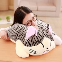 韩国萌起司猫公仔小猫咪萌毛绒玩具生日礼物抱枕布娃娃玩偶送女友