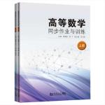 高等数学同步作业与训练(全两册)