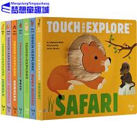 英文原版 Touch and Explore系列10册 纸板触摸翻翻书 STEM科普学习大进化 法国艺术品牌Twirl