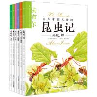 写给中国儿童的昆虫记(全6册)