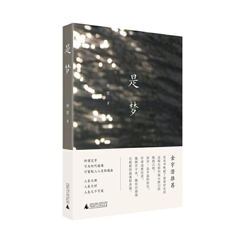是梦金宇澄老师推荐之作:它唤起人们对生活的敬畏与追索。在这个告别的年代中,本书重现了那些一去不返的人和事,留存了生活的光亮。