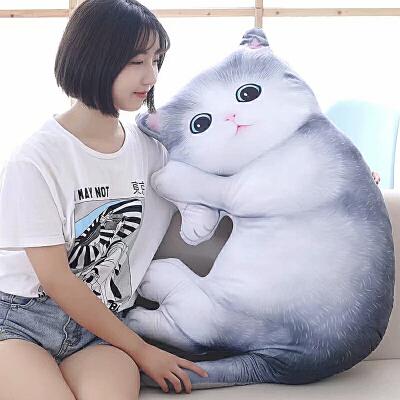 可爱仿真猫咪毛绒玩具猫公仔抱枕3d枕头抱着睡觉的布娃娃女孩礼物