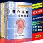 正版 耳穴治疗学 第二版第2版 +耳穴诊断彩色图谱+耳穴诊断学黄丽
