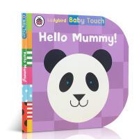英文原版 Baby Touch: Hello, Mummy!宝宝触摸书:你好,妈妈!儿童启蒙纸板书触摸书感官认知启蒙亲