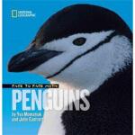 【正版直发】Face to Face with Penguins Yva Momatiuk,John Eastcott