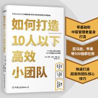 如何打造10人以下高效小团队(专为新晋和中层管理者量身打造的小团队管理实用手册)