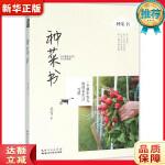种菜书 吴当 湖北科学技术出版社 9787535276070 新华正版 全国85%城市次日达