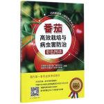 番茄高效栽培与病虫害防治彩色图谱