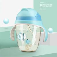儿童水杯儿童幼儿园婴儿水杯宝宝学饮杯ppsu吸管杯