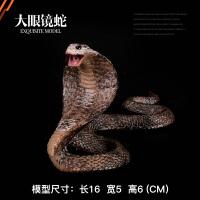 整蛊模型蟒蛇 响尾蛇 眼镜蛇 草蛇儿童仿真实心野生动物园玩具